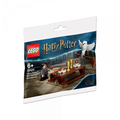 LEGO - 30420 Harry Potter™ und Hedwig™